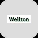 Ремонт Wellton в Нерюнгри