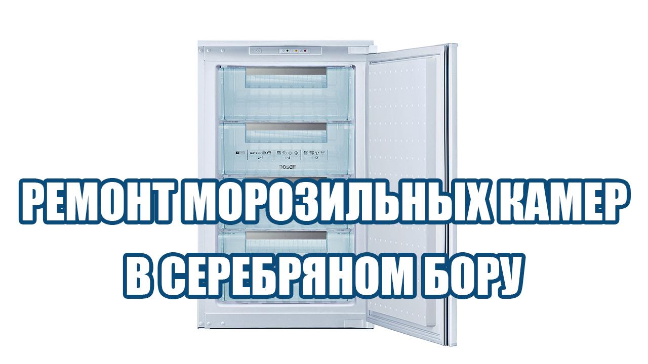 Ремонт морозильных камер в Серебряном бору